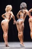 El modelo femenino Evelyn Dirocie de la aptitud del bikini muestra su parte posterior p del mejor Fotografía de archivo libre de regalías
