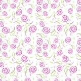 El modelo inconsútil con elegancia stylize rosas Imagen de archivo