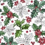 El modelo inconsútil con la Navidad tradicional florece las plantas de la poinsetia stock de ilustración