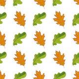 El modelo inconsútil con verde dibujado mano y la naranja se va en el fondo blanco Foto de archivo libre de regalías