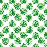 El modelo inconsútil con verde exótico tropical se va en un fondo blanco Imagenes de archivo