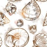 El modelo inconsútil de diversas formas descasca los bosquejos 2 Imagen de archivo libre de regalías