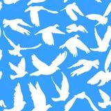 El modelo inconsútil de las palomas y de las palomas en el fondo azul para el concepto y la boda de la paz diseña Fotos de archivo libres de regalías