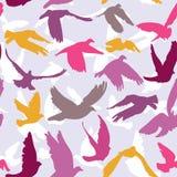 El modelo inconsútil de las palomas y de las palomas en el fondo del lilak para el concepto y la boda de la paz diseña Fotografía de archivo libre de regalías