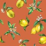 El modelo inconsútil de las ramas de los limones frescos de los agrios con las hojas y las flores del verde Fotos de archivo libres de regalías