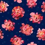 El modelo inconsútil de las rosas, peonías florece con las bolas Imagen de archivo