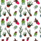 El modelo inconsútil de seis cactus de la acuarela de diferente mecanografía adentro los potes foto de archivo libre de regalías