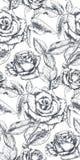 El modelo inconsútil del vector con la mano dibujada subió las flores y las hojas en blanco fotografía de archivo libre de regalías