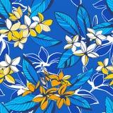 El modelo inconsútil del verano floral tropical con plumeria florece hojas de palma ilustración del vector