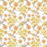 El modelo inconsútil floral, amarillo, naranja florece el fondo blanco Fotografía de archivo