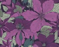 El modelo inconsútil floral encendido con la clemátide dibujada mano florece libre illustration