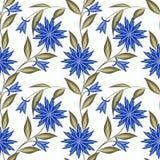 El modelo inconsútil floral, historieta linda florece el fondo blanco Imagen de archivo