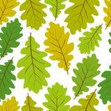 El modelo inconsútil de las hojas hermosas, vector el backgr sin fin natural Imagen de archivo libre de regalías