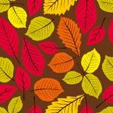 El modelo inconsútil de las hojas hermosas, vector el backgr sin fin natural Fotos de archivo