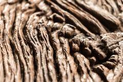 El modelo local tradicional de las telas es un surco profundo hermoso Imagen de archivo