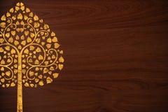 El modelo tailandés talla el oro del árbol en la textura de madera Fotografía de archivo