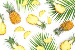 El modelo tropical de la comida hecho de la piña da fruto con las hojas de palma en el fondo blanco Endecha plana, visión superio fotografía de archivo