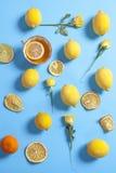El modelo tropical de la taza de diversos tamaños del té, de las rosas y de los limones dispersó en fondo azul Diseño fresco para Fotos de archivo