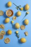 El modelo tropical de la taza de diversos tamaños del té, de las rosas y de los limones dispersó en fondo azul Diseño fresco para Fotos de archivo libres de regalías