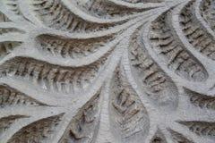 El modelo vegetal que se ha cortado en una piedra Fotografía de archivo