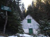 El molino abandonado de madera viejo en el bosque Imagenes de archivo