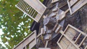 El molino que gira en el viento Ciérrese encima de molino viejo en el fondo de los árboles del otoño Herencia histórica del molin almacen de metraje de vídeo