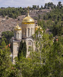 El monasterio de Moscovia Fotografía de archivo libre de regalías