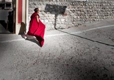 El monje joven Imagen de archivo libre de regalías