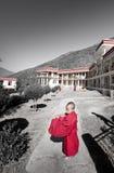 El monje joven Fotos de archivo libres de regalías