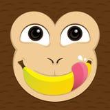 El mono come el plátano Foto de archivo libre de regalías