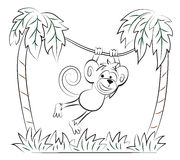 El mono que salta en la palma Foto de archivo libre de regalías