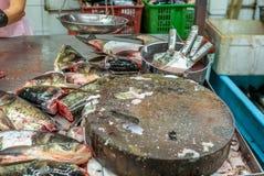 El montón de pescados frescos coloridos dirige en el mercado mojado de Singapur adentro Imagen de archivo libre de regalías