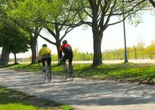 El montar en bicicleta en un parque Fotos de archivo libres de regalías
