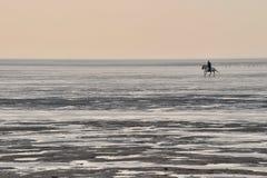 El montar en el mar de wadden Foto de archivo libre de regalías