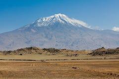 El monte Ararat Foto de archivo