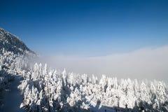 El Monte Emei Fotos de archivo