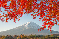 El monte Fuji con el arce rojo hermoso Imagenes de archivo