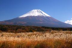 El monte Fuji con la hierba de plata japonesa Foto de archivo libre de regalías