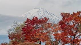 El monte Fuji en la estación del otoño Imagen de archivo