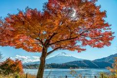 El monte Fuji en la estación del otoño Imágenes de archivo libres de regalías