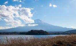 El monte Fuji, la nube, el lago y las flores secas en Oishi parquean fotos de archivo