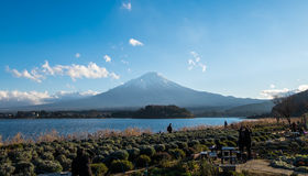 El monte Fuji y la orilla del lago de la lavanda de Oishi parquean en invierno fotos de archivo