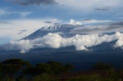 El monte Kilimanjaro Fotos de archivo libres de regalías