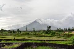 El Monte Mayon en Albay, Filipinas imagenes de archivo
