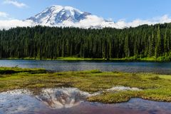 El Monte Rainier reflejó en un lago Foto de archivo libre de regalías