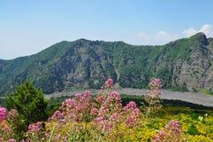 El monte Vesubio Foto de archivo