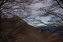 El Montseny Fotografia Royalty Free