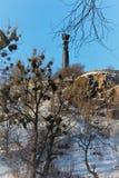 El monumento de la gloria en la ciudad de Zhytomyr Imagen de archivo