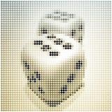El mosaico de dos vectores corta (6) en cuadritos Imagen de archivo