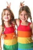 El mostrar de las hermanas del gemelo idéntico Imagen de archivo libre de regalías